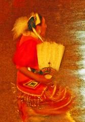 native dancer, November 21, 2010, navy pier, Chicago