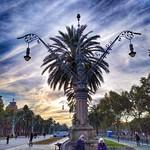 20. November 2019 - 9:22 - Barcelona. Paseo Lluís Companys.