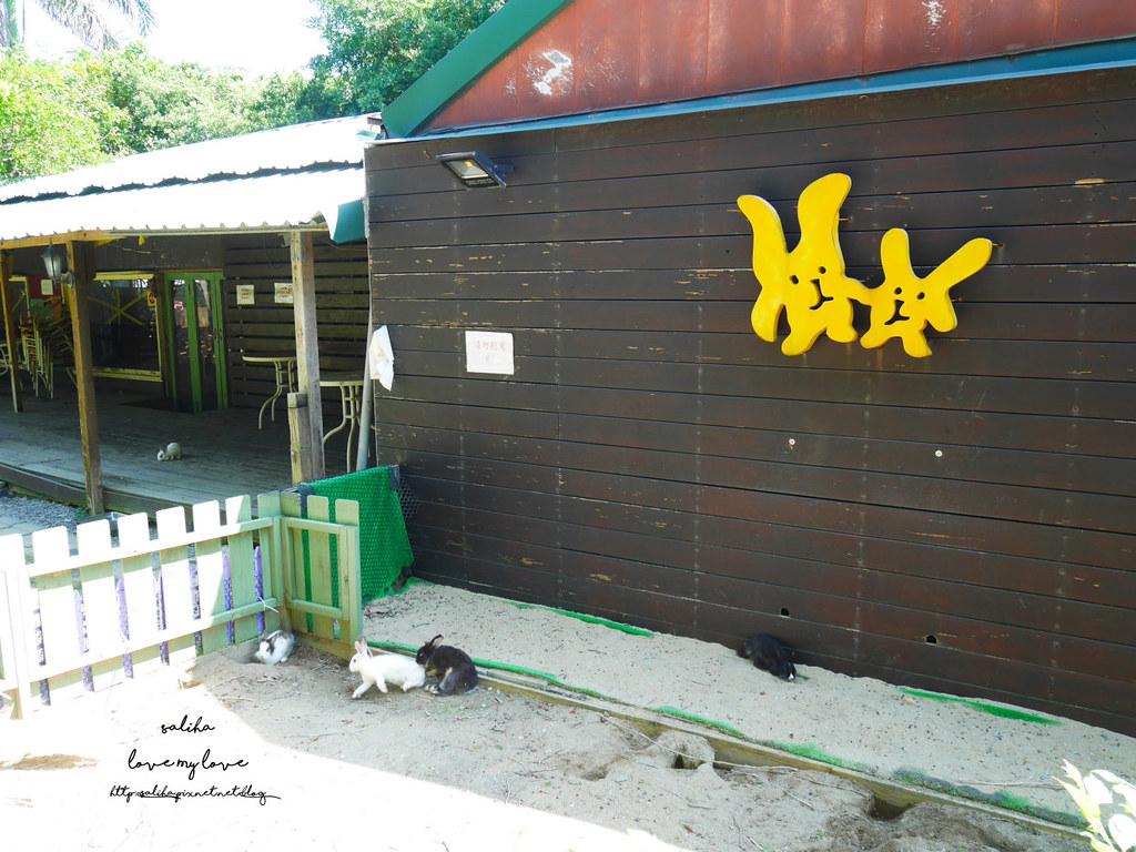 新北八里一日遊景點行程推薦TO House兔子庭園餐廳咖啡廳 (4)