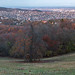 """<p><a href=""""https://www.flickr.com/people/168042604@N07/"""">Behind Budapest</a> posted a photo:</p>  <p><a href=""""https://www.flickr.com/photos/168042604@N07/49103777281/"""" title=""""Late fall in Normafa""""><img src=""""https://live.staticflickr.com/65535/49103777281_f3f4c4bfe9_m.jpg"""" width=""""240"""" height=""""62"""" alt=""""Late fall in Normafa"""" /></a></p>  <p>18/11 Late fall in Normafa<br /> <br /> Budapest, Hungary</p>"""