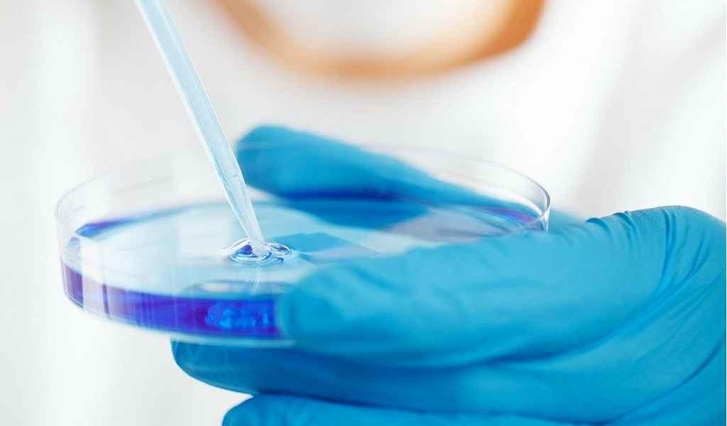 un-antibiotique-découvert-dans-les-intestins-ver