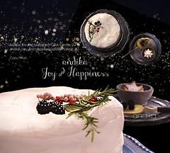 andika[Joy and Happiness]Cake set at Tannenbaum