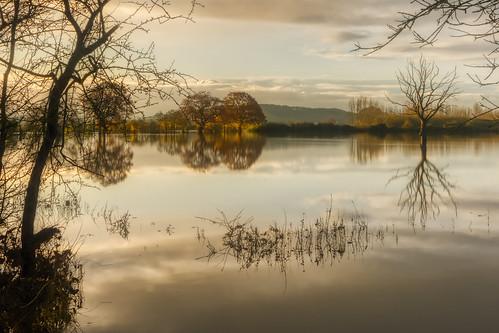 flood flooding gloucestershire severn riversevern deadtree d7100