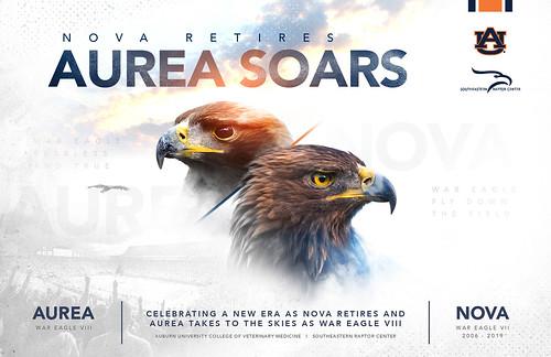 A graphic stating Nova Retires, Aurea Soars.