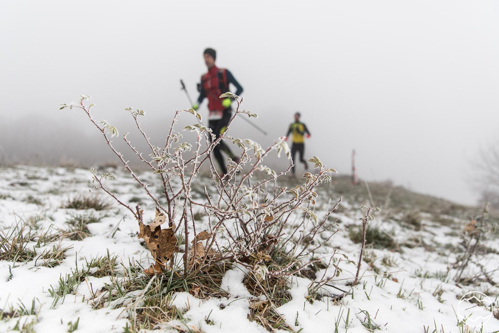 Trail Arclusaz 2019-88