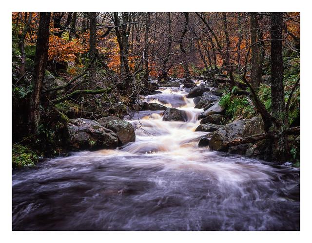 FILM - Beautiful Padley Gorge