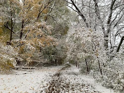 October 31, 2019 snowfall