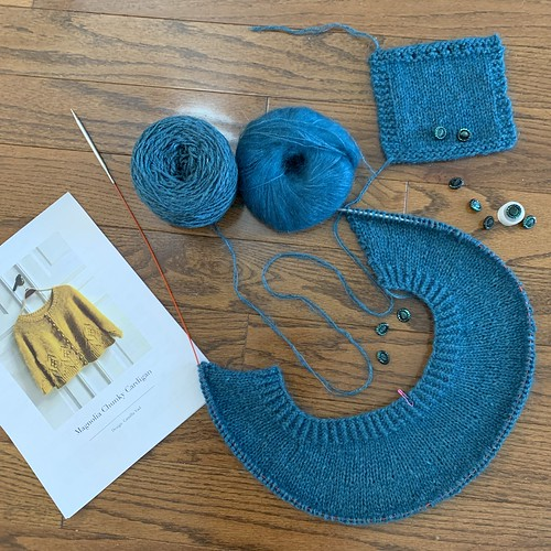 New on my needles is Camilla Vad's Magnolia Chunky Cardigan. The gorgeous buttons I bought years ago match perfectly the yarn I have chosen - The Fibre Company's Arranmore Light held double with Garnstudio Drops Kid Silk.