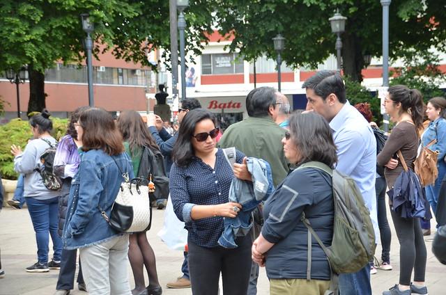 Intervención Artística en apoyo a la resistencia Mapuche