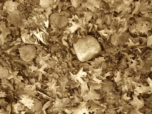 breadrock 3