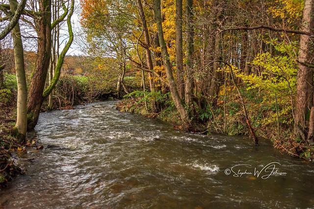 SJ2_3028 - River Calder