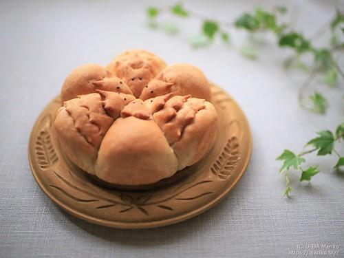 ハリネズミちぎりパン 20191120-IMG_6505 (3)