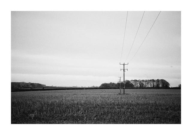 FILM - Empty fields-2