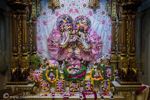 ISKCON Vrindavan Deity Darshan 23 Nov 2019