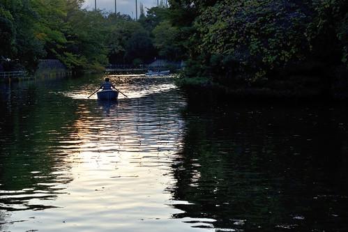 lake water reflection boat canoe sunset goldenhour nature landscape weekend leisure musashisekipark 武蔵関公園