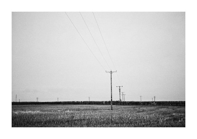 FILM - Empty fields