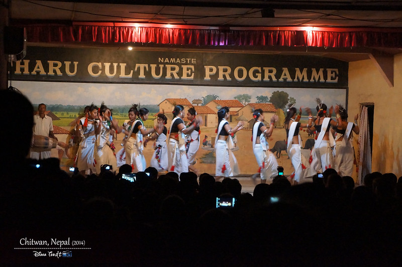 2014 Nepal Chitwan Tharu Culture Programme