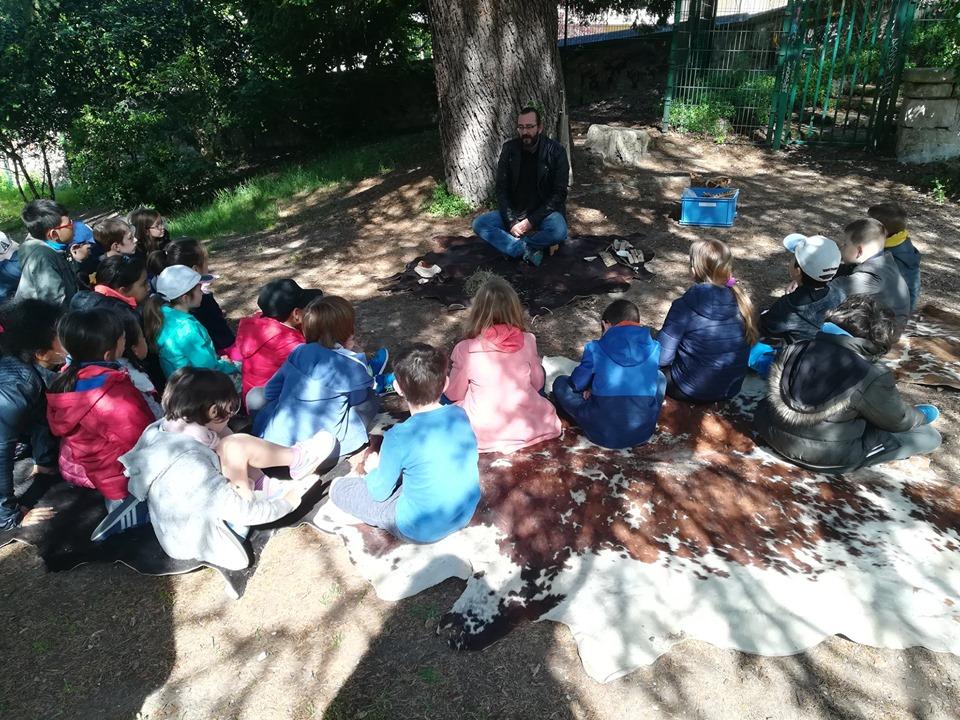 classe sous un arbre