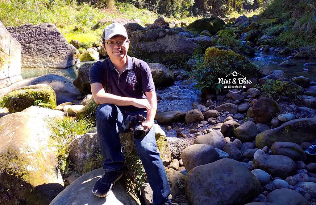 杉林溪 落羽松 水杉 楓葉 門票旅展  南投景點32