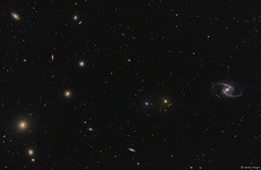 The Fornax Galaxy Cluster