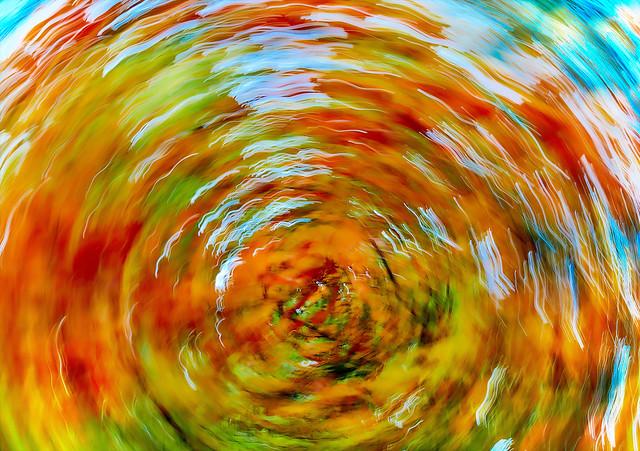 Fall's Falling Leaf Fell