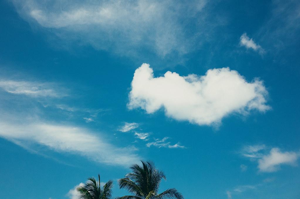 150615.palmtree.clouds.mb-013884