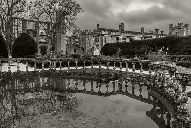 pond reflection