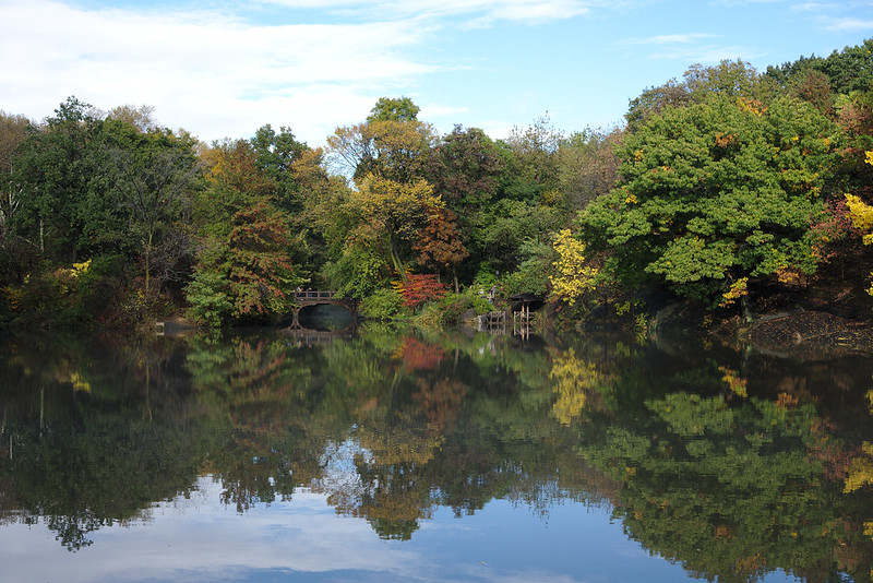 The Lake & Oak Bridge, Central Park