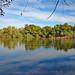 Verde River, Tonto National Forest, AZ