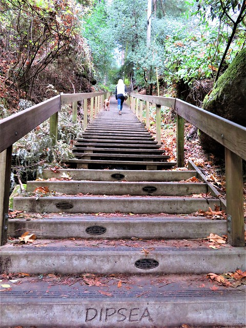 Up and up .... 690 steps