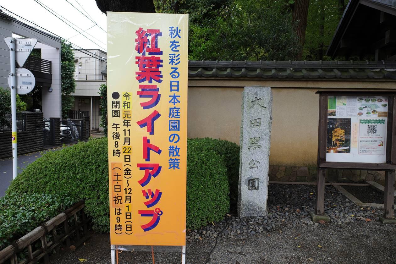 大田黒公園 2019年紅葉ライトアップ時期