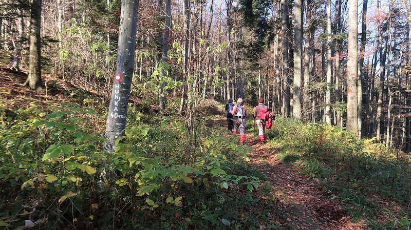 Medvednica Trail 20, 21, 22, CROATIA, 23 November 2019