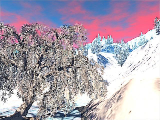 Jacksonville Winter Wonderland - Snowy Mountain