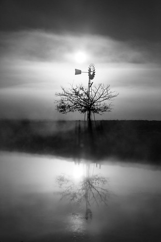 richmondlowlands newsouthwales australia richmond windmill nsw sydney silhouette black white tree reflection sunrise dawn