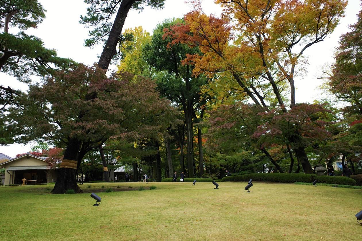 大田黒公園の広場