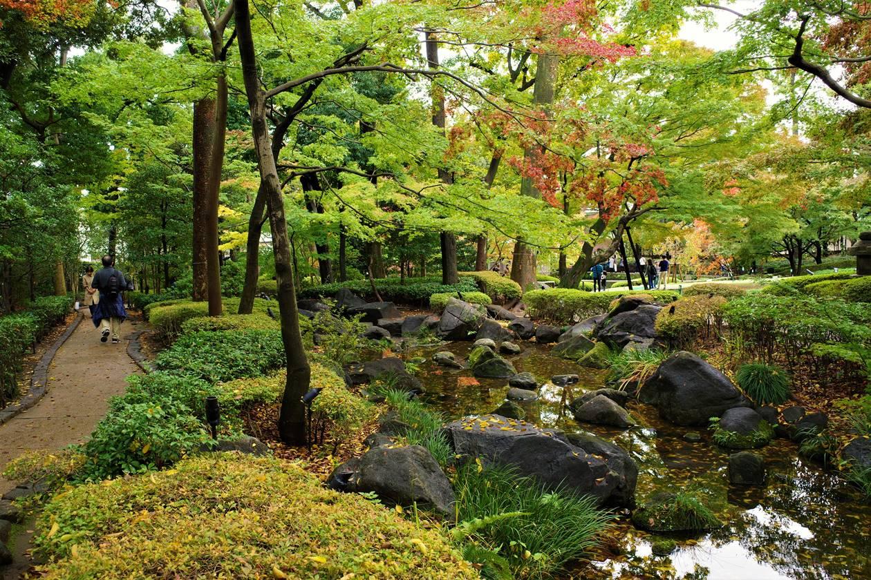 大田黒公園の庭園風景