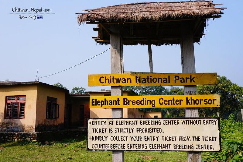 2014 Nepal Chitwan Elephant Breeding Center 1