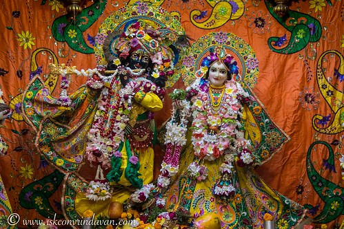 ISKCON Vrindavan Deity Darshan 24 Nov 2019