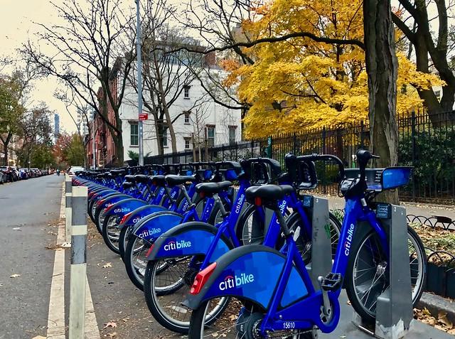 Fall colors - New York City