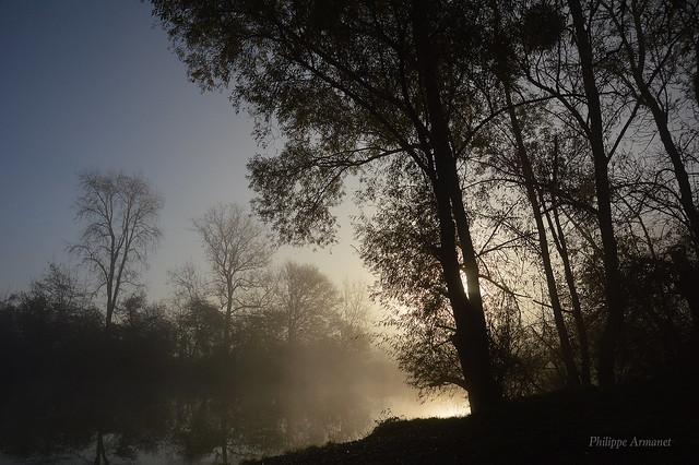 Berges de Seille au matin