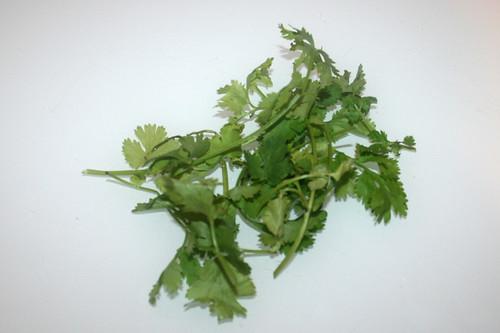 04 - Zutat Koriander / Ingredient cilantro