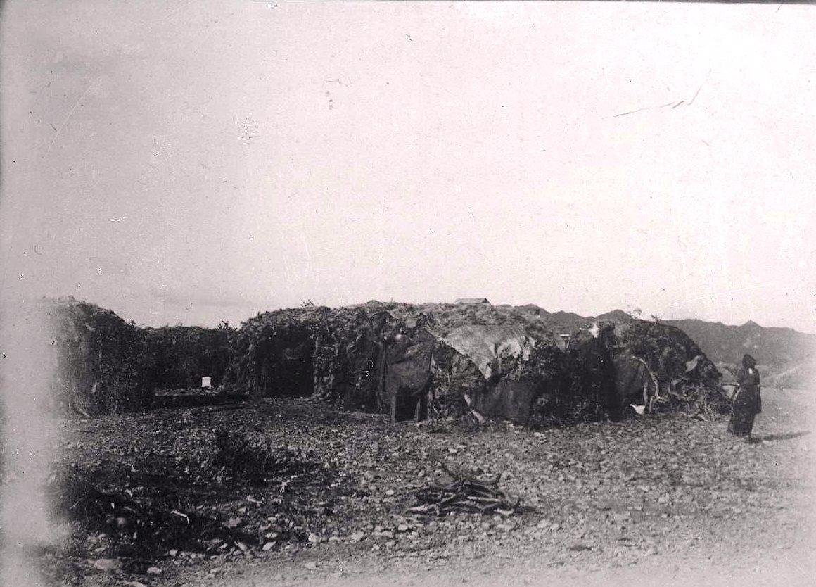 647. Данакильская пустыня. Данакильское кочевье