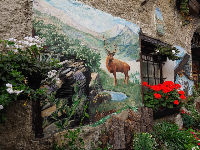 Bramito del cervo (Val Chisone) - 12/10/2019