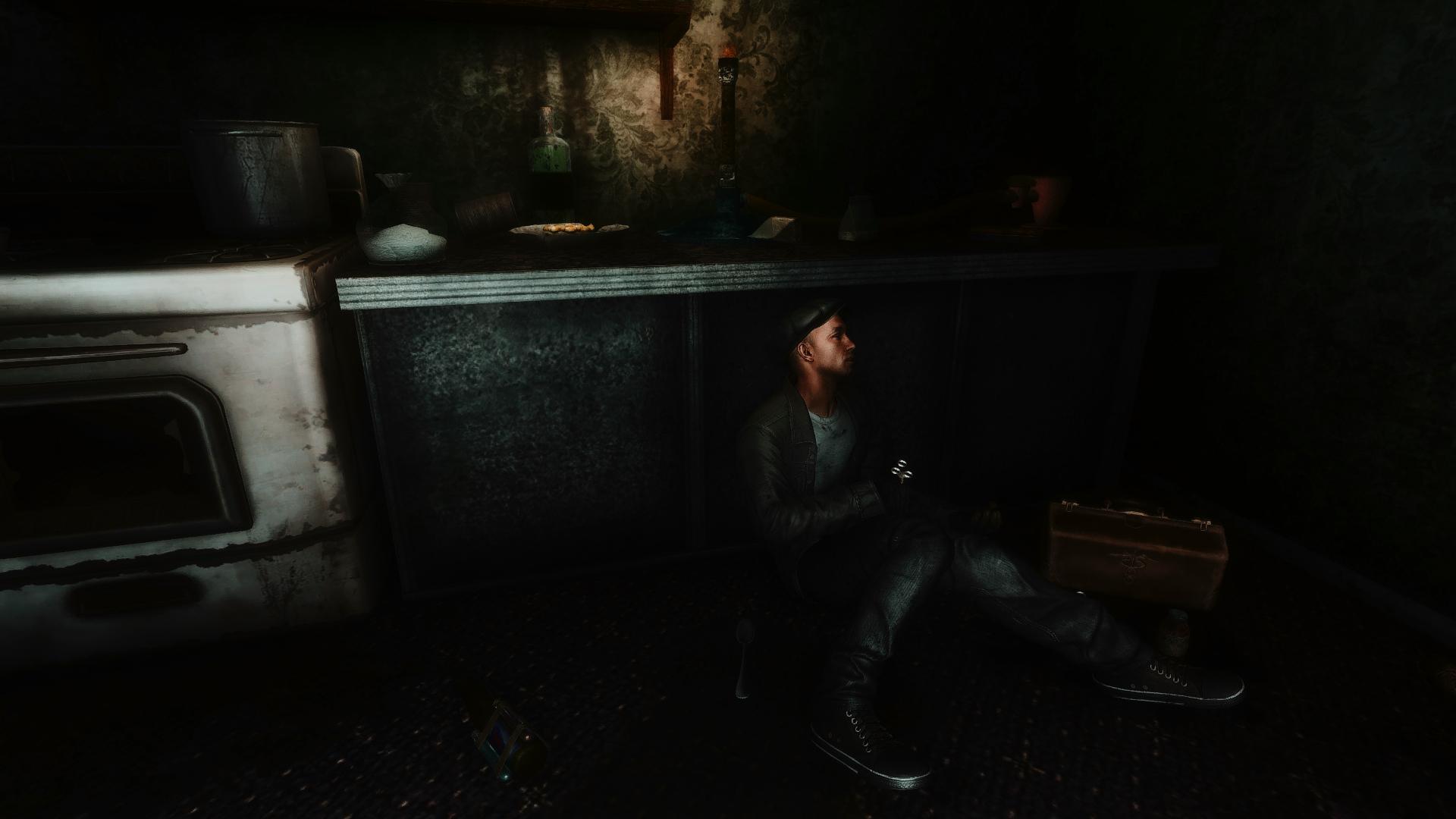 Fallout Screenshots XIV - Page 9 49116940226_202a915335_o