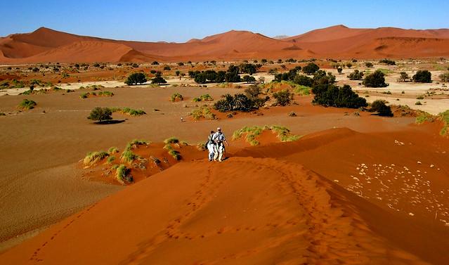NAMIBIA,  Sossusvlei, Wüstenlandschaft mit herrlichen Dünen,  N2/12137