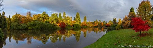 6d autumn autumnal brown canon capability cloud colour east england fall garden gardens green inited kingdom lake landscape leaves national nature orange park red sheffield sky sussex tourist travel trees trust uckfield uk water yellow middle pond evening light panorama panoramic reflection