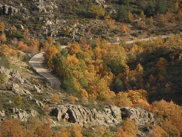 Carretera escénica en la Sierra Norte de Madrid