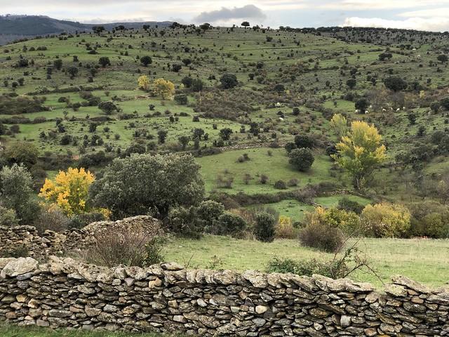 Campiña de la Sierra Norte de Madrid (Paredes de Buitrago)