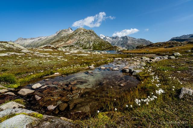Kleine Bach am Grimselpass (Switzerland)