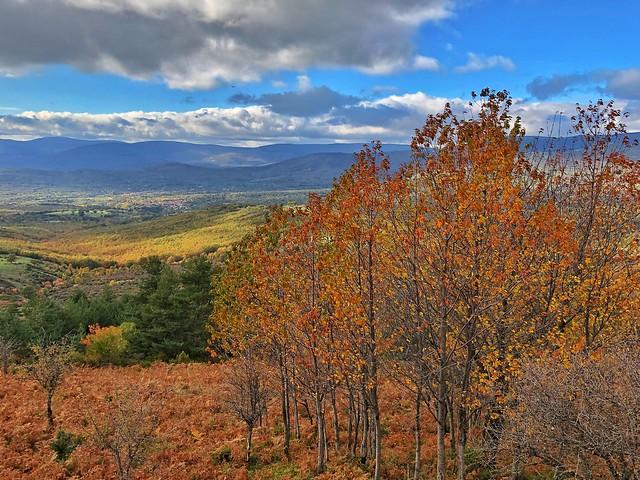 Paisaje otoñal en la Sierra Norte de Madrid